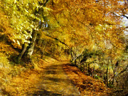 Country Digital Art Metal Prints - Autumn Path Metal Print by Dale Jackson