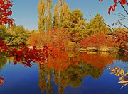 Idaho Scenery Prints - Autumn Photography Moment - Scenic Idaho Print by Photography Moments - Sandi