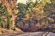 Autumn Railroad Print by Douglas Barnard