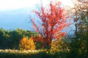 New England. Pastels Posters - Autumn Red And Yellow Poster by Smilin Eyes  Treasures