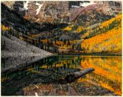 Maroon Bells Posters - Autumn Reflection Poster by Tim Reaves