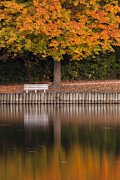 Empty Bench Framed Prints - Autumn Reflections Framed Print by Andrew Soundarajan