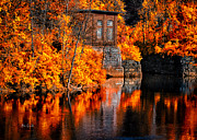 Water Reflections Prints - Autumn Reflections  Print by Bob Orsillo