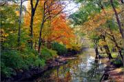 Wide Belt Prints - Autumn Reflections Print by Brittany H