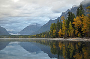 White Water - Autumn Reflections Glacier National Park by Bruce Gourley