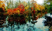 Holly Martinson - Autumn Reflections