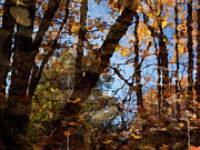 """autumn Reflection"" Photos - Autumn Reflections by John Burnett"