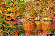 """autumn Reflection"" Photos - Autumn Reflections by Kristin Elmquist"