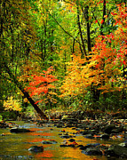 Water Flowing Prints - Autumn Reflects Print by Robert Harmon