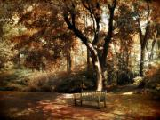 Dappled Light Posters - Autumn Repose Poster by Jessica Jenney