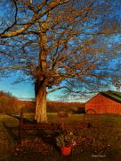 Barn Drawings Prints - Autumn Rest Print by Diane E Berry