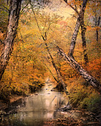 Beautiful Creek Posters - Autumn Riches 1 Poster by Jai Johnson