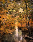 Autumn Scene Photos - Autumn Riches 2 by Jai Johnson