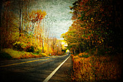 Textured Leaves Posters - Autumn Road Connecticut USA Poster by Sabine Jacobs