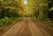 Gravel Road Prints - Autumn Road Print by Michael Peychich
