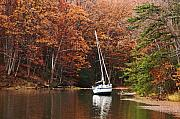 Yacht Photos - Autumn Scenery at Chesapeake Bay by Hideaki Sakurai