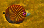 Seashore Digital Art Metal Prints - Autumn Metal Print by Scott Evers