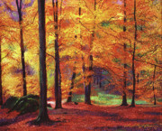Featured Art Posters - Autumn Serenity Poster by David Lloyd Glover