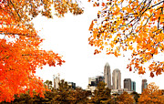 Mecklenburg County Prints - Autumn skyline Print by Patrick Schneider