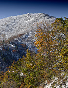 Red Leaf Prints - Autumn Snow on Skyline Drive - Shenandoah National Park - Virginia Print by Brendan Reals