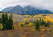 Colorado Scenic Framed Prints - Autumn Song Framed Print by Tim Reaves