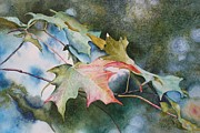 Close Focus Nature Scene Painting Prints - Autumn Sparkle Print by Patsy Sharpe