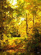 Johnny Trippick Prints - Autumn Splash Print by Johnny Trippick
