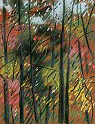 Autumn Trees Drawings Prints - Autumn Splendor Print by Donald Maier