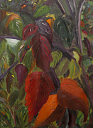 Autumn Splendor Print by Art Hill Studios