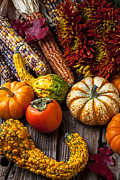 Gourds Posters - Autumn still life colors Poster by Garry Gay