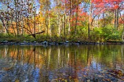 Sunset Greeting Cards Posters - Autumn Stream Poster by Debra and Dave Vanderlaan