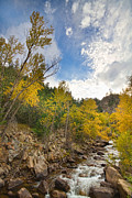 Lyons Prints - Autumn Stream Print by James Bo Insogna