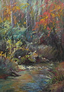 Trout Stream Landscape Framed Prints - Autumn Stream Framed Print by Pamela Pretty