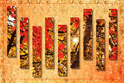 Nature Scene Mixed Media Metal Prints - Autumn Sunrise Painterly Abstract Metal Print by Andee Photography