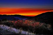 Photos Of Autumn Digital Art Prints - Autumn Sunrise Print by William Carroll