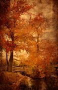 Layered Prints - Autumn Tapestry - Lake Carasaljo Print by Angie McKenzie