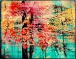 Gina Signore Framed Prints - Autumn tapestry  Framed Print by Gina Signore