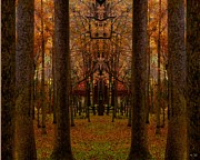 Changing Of The Seasons Prints - Autumn The Cathedral Of The Trees Print by Rene Crystal