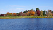 Fall Scenery Prints - Autumn Trees by the Lake Print by Sandy Keeton