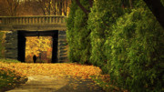 Walkway Prints - Autumn Twilight Print by Bob Orsillo