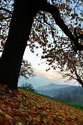 Autumn View Print by Bruno Santoro