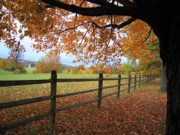 Old Fence Posts Posters - Autumn Vista Poster by Don Struke