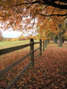 Old Fence Posts Posters - Autumn Vista in Virginia Poster by Don Struke