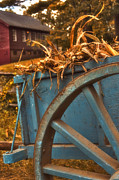 Corn Wagon Framed Prints - Autumn Wagon Framed Print by Joann Vitali