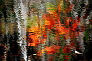 Water Ripples Framed Prints - Autumn Water Colors Framed Print by Robert Harmon
