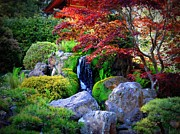 Japanese Garden Framed Prints - Autumn Waterfall Framed Print by Carol Groenen