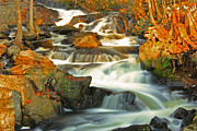 Cathy Leite - Autumn Waterfall