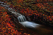 Rock Pyrography Acrylic Prints - Autumn waterfall Acrylic Print by Irinel Cirlanaru