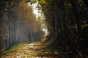 Landscap Photo Originals - Autumn Way by Jaroslaw Oleksyk