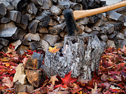 Tom Biegalski Acrylic Prints - Autumn Wood Chopping Acrylic Print by Tom Biegalski